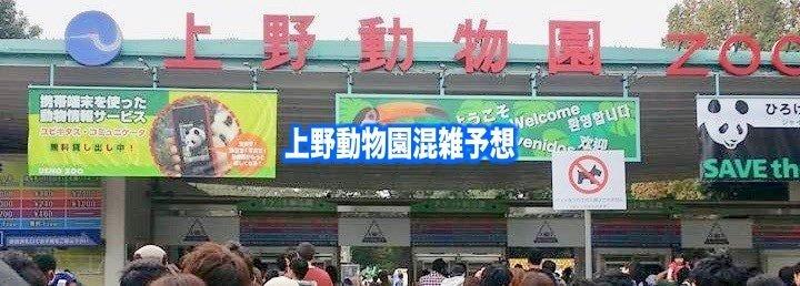 【上野動物園混雑状況2020】シャンシャン&春夏休み(GWお盆)と土日の混雑回避
