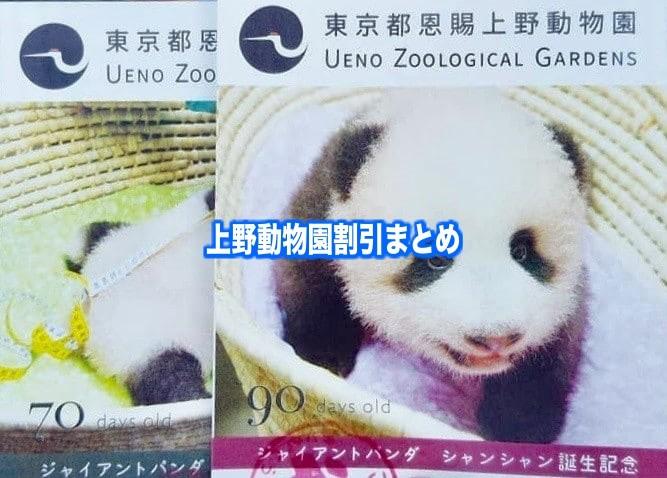 【上野動物園割引クーポン2021】無料開園日&料金を安く行く方法5選!駐車場情報