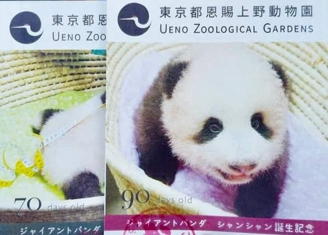 上野動物園 割引