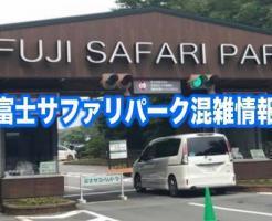 富士サファリパーク 混雑