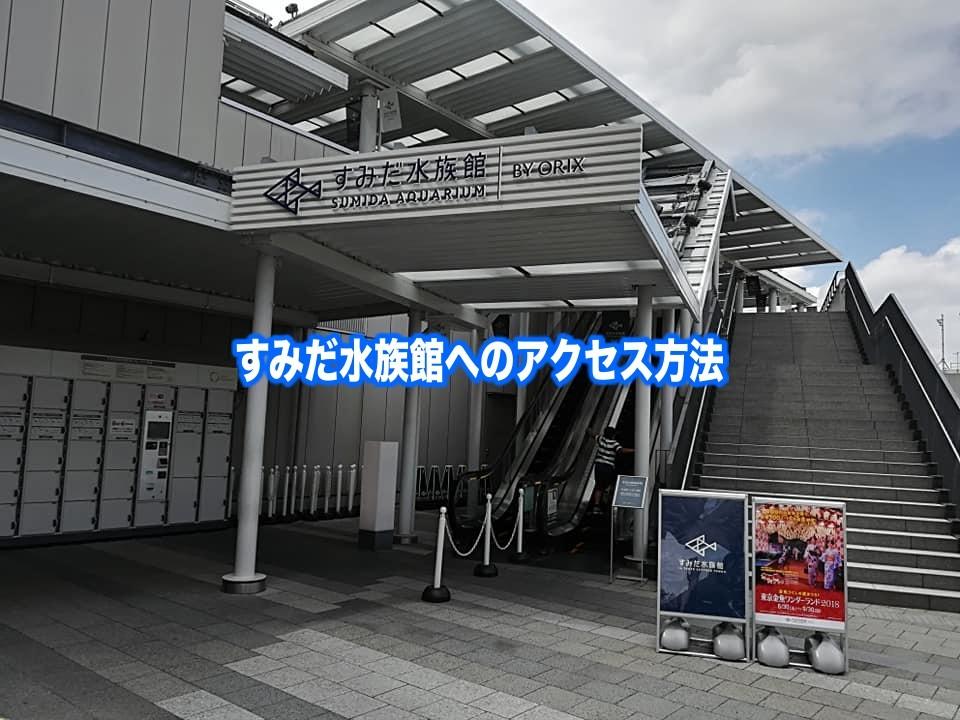 【すみだ水族館アクセス】電車『押上(東京スカイツリー前)』&バスでの行き方