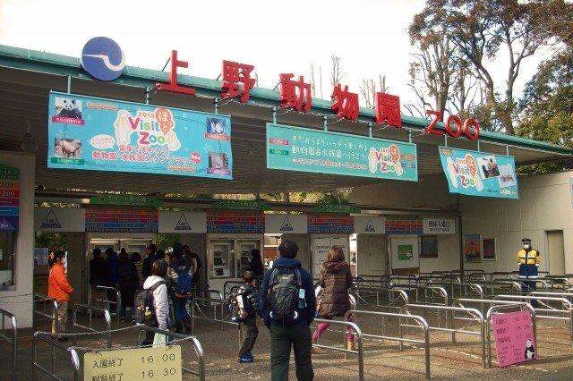 国立科学博物館 上野動物園 混雑