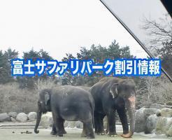 富士サファリパーク 割引