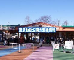 東武動物公園 混雑