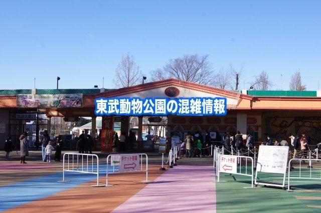 【東武動物公園混雑予想2020】春夏休み(GWお盆)&駐車場とアトラクションの待ち時間