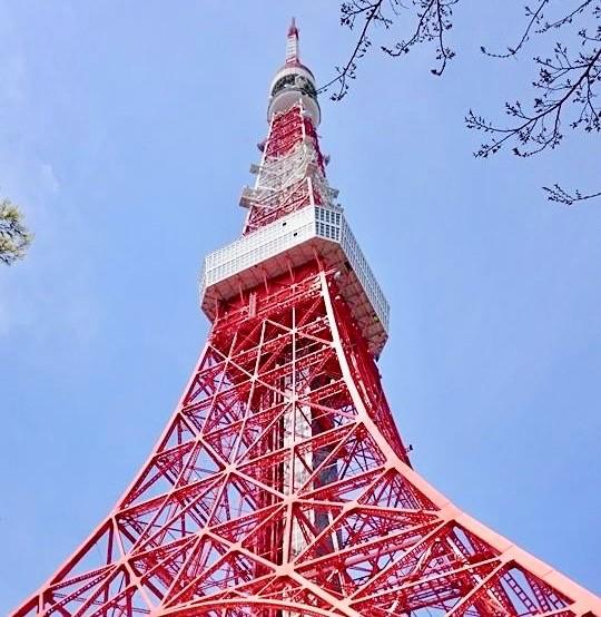 東京タワー 混雑