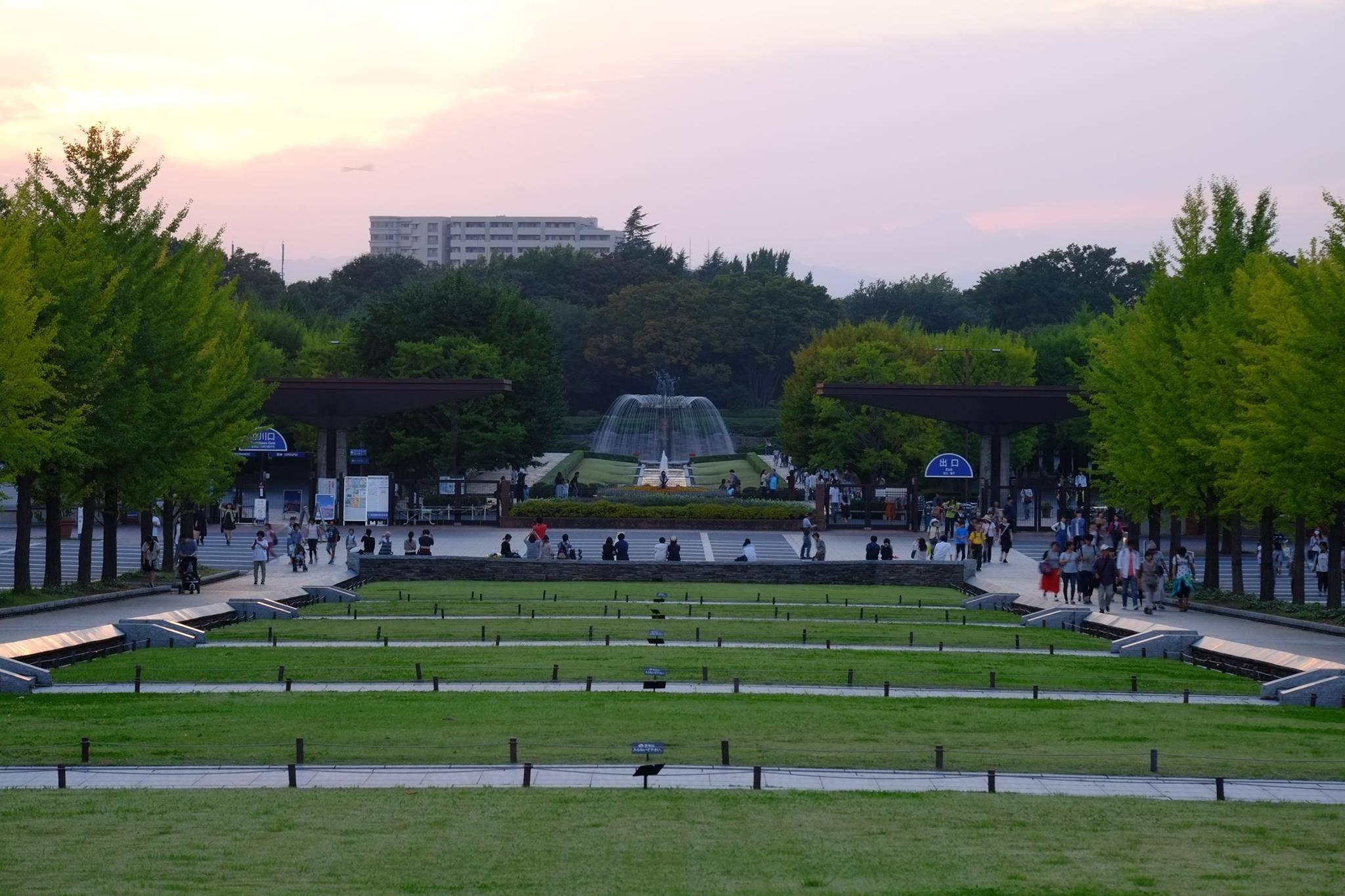 昭和記念公園 混雑