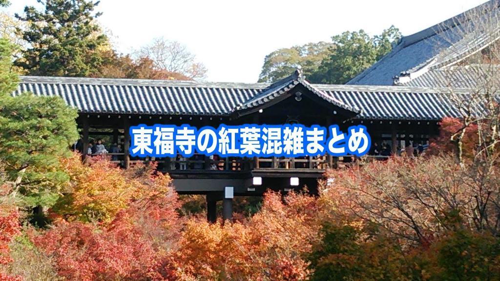 【東福寺の紅葉混雑状況2020】 平日&土日(見頃時期)!ライトアップ混雑回避