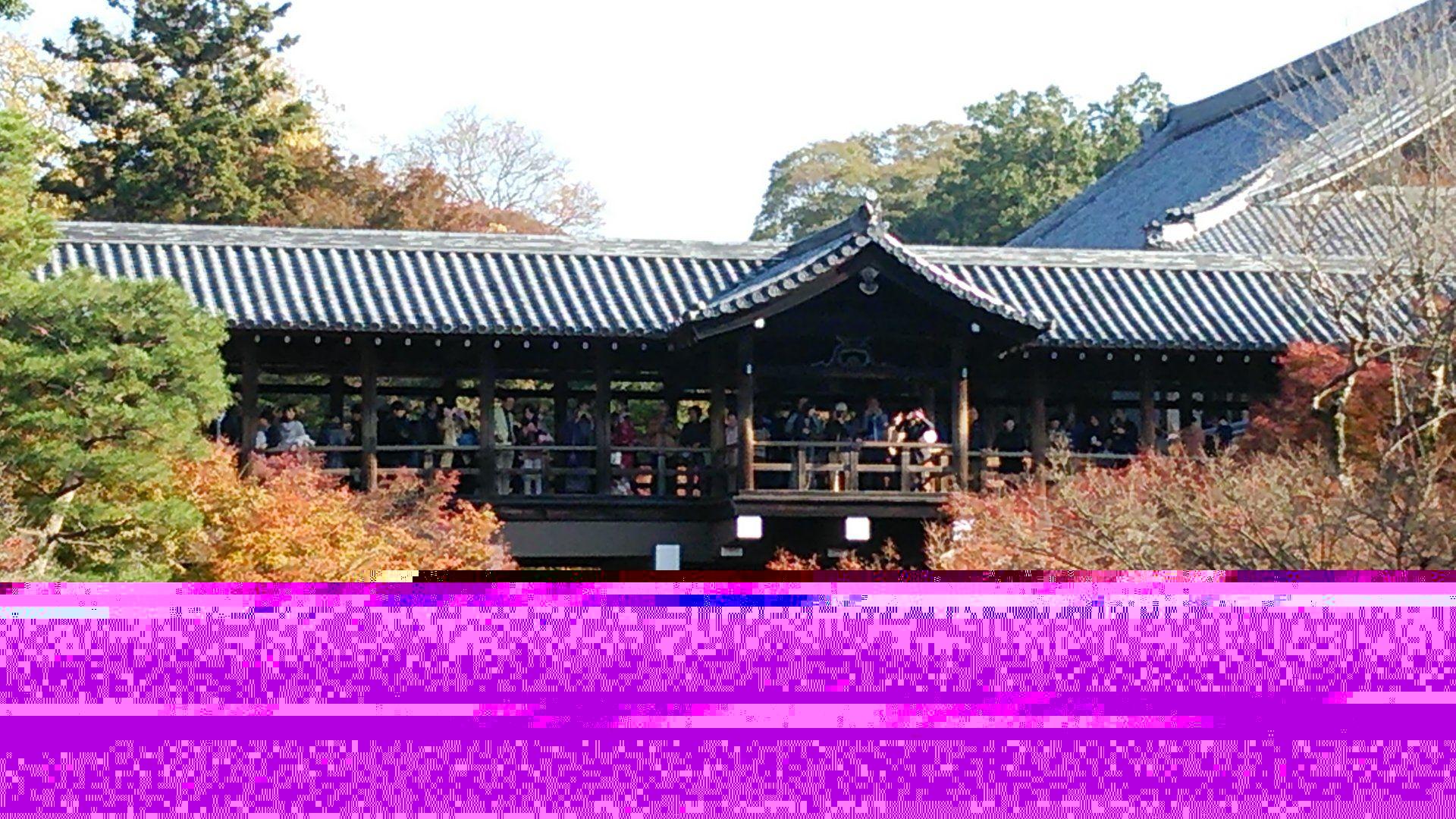 瑠璃光院 東福寺 混雑