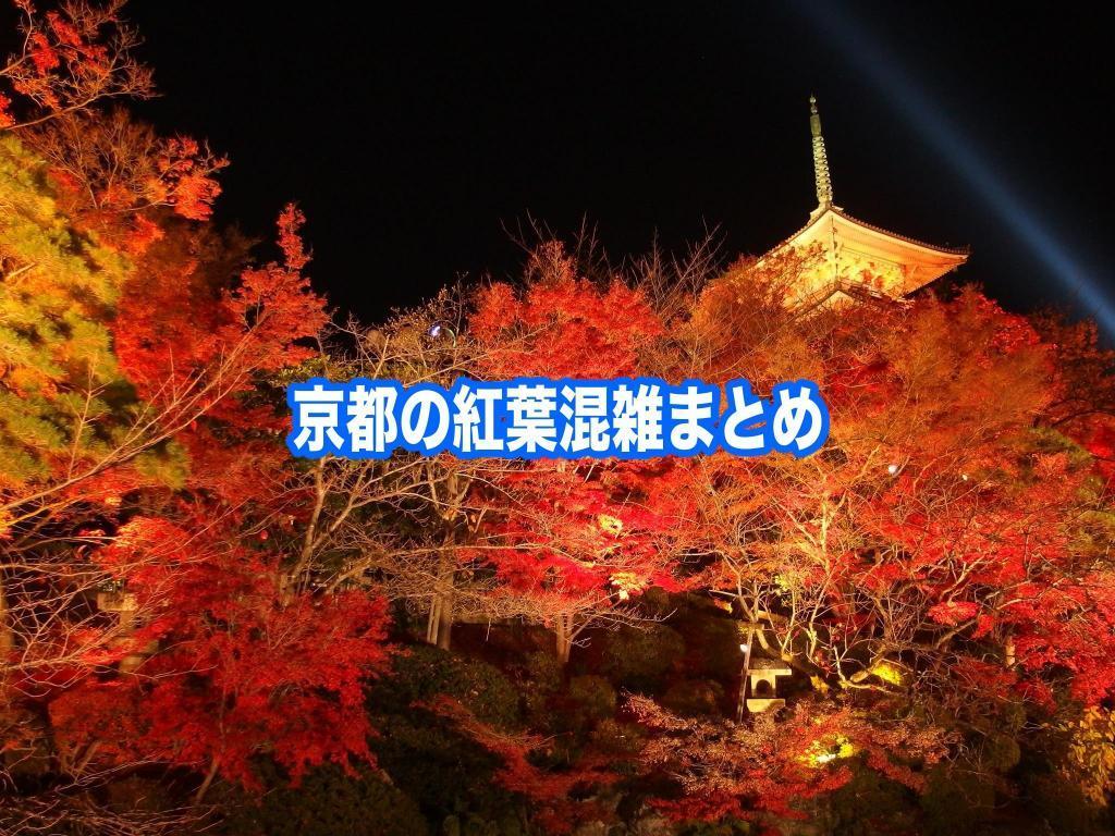 【京都の紅葉混雑状況2021】 平日・土日(見頃時期)!車と自電車混雑回避法
