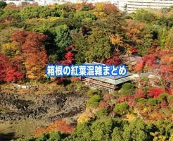 箱根 紅葉 混雑