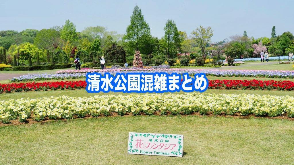 【清水公園混雑状況2021】春夏冬休み(GWお盆) &土日と平日!駐車場攻略