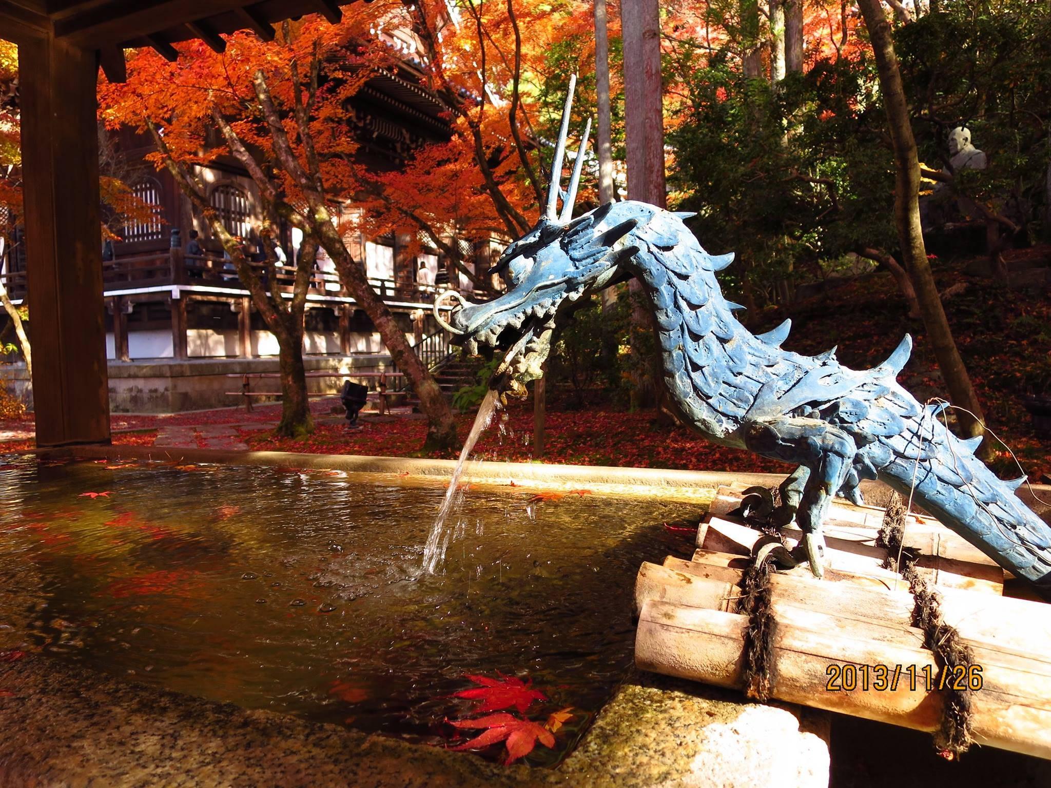 京都 紅葉 永観堂