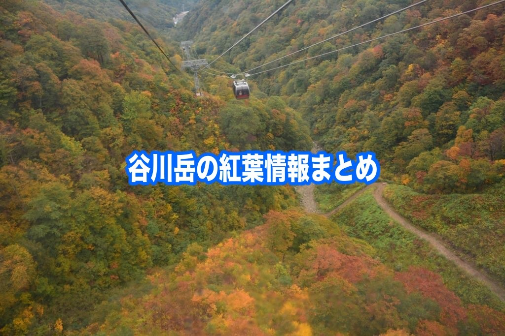 谷川岳 紅葉