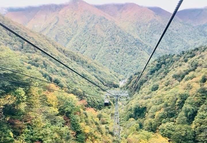 谷川岳 紅葉 ロープウェイ
