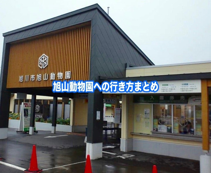 【旭山動物園アクセス】新千歳・旭川空港&札幌駅!電車とバス安い行き方