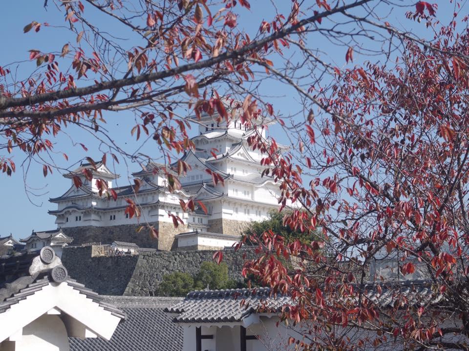 姫路城 紅葉