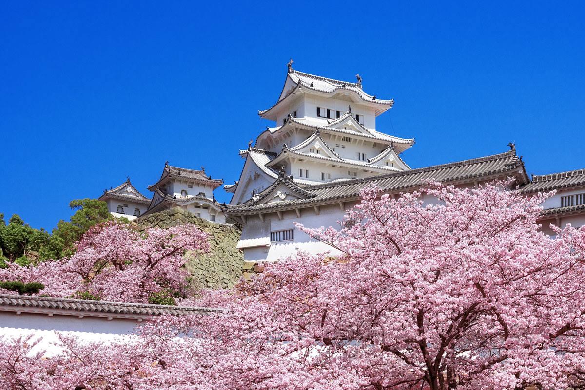 姫路城 混雑