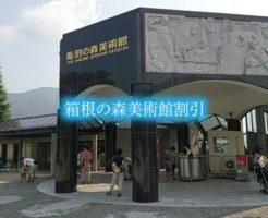 箱根の森美術館 割引